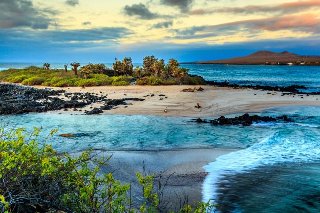10 reasons to visit the galapagos islands now